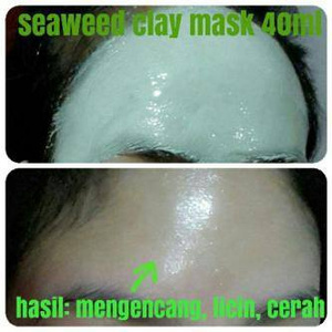 manfaat Seaweed Clay Mask
