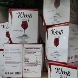 WMP_HWI