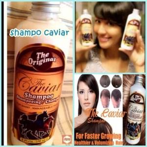 shampo-caviar