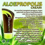 HD Aloe Propolis Cream