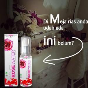 beauty rose 7
