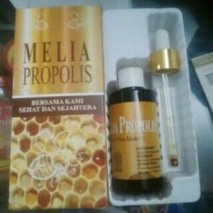 melia propolis new 8