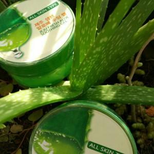 Jeju Fresh Aloe