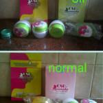 Jual Cream Susu Domba Queensha ( Normal & Acne ) Perawatan Wajah