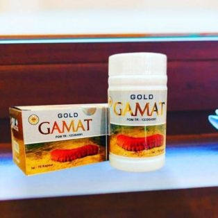 Kapsul Gamat Gold Suplemen Kesehatan