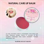Pretty White Natural Care Lip Balm Untuk Kesehatan Bibir