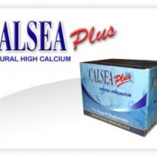 Peninggi Badan Calsea
