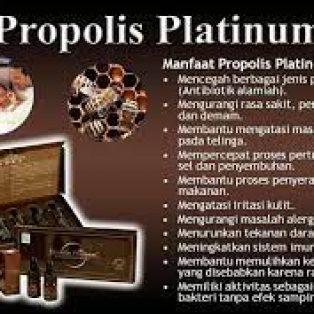 Jual PROPOLIS PLATINUM Original BPOM