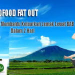 Biofood  Fat out