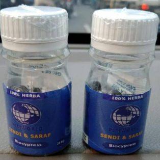 Bio Crypress PLM World