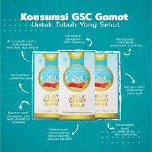Jual GSC jelly Gamat Emas 350 gram